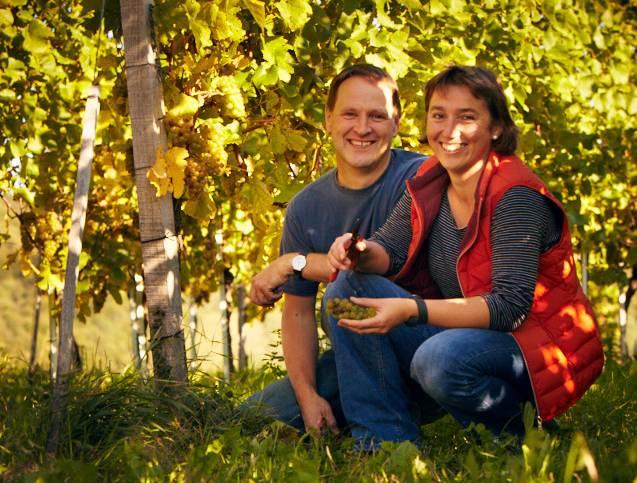 Gabriele og Holger Koch Grauburgunder *** 2013 iblandt de 10 bedste vine fra Baden årgang 2013